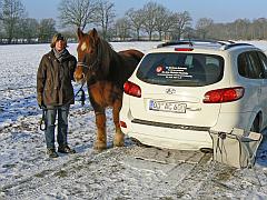 Pferdepraxis Leistungen